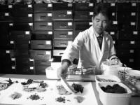 Terapeuta da medicina tradicional chinesa