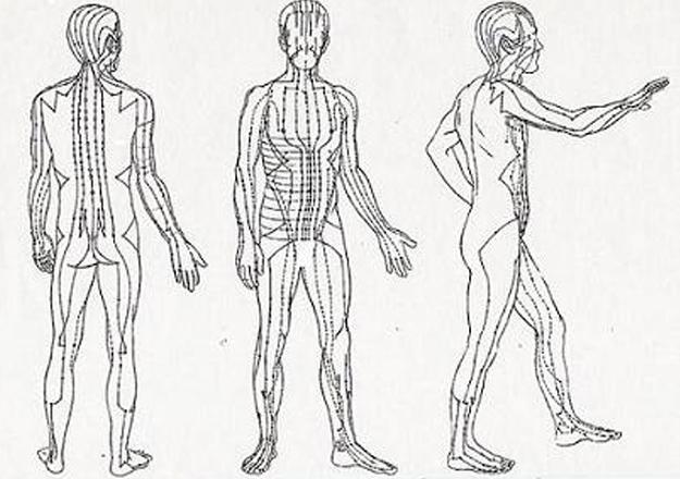 Meridianos usados na acupuntura